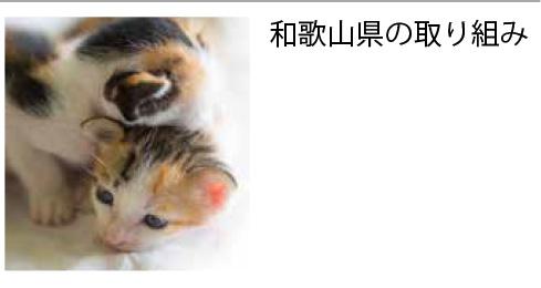和歌山県の取り組み